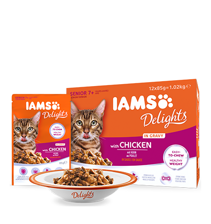 IAMS Delights with Chicken in Gravy for Senior Cats (12 pack)